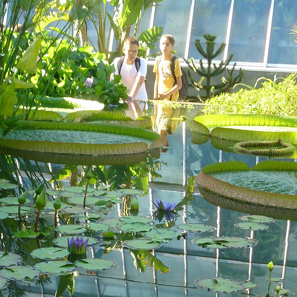 Blog - 201819 Besuch botanischer Garten Bild 2