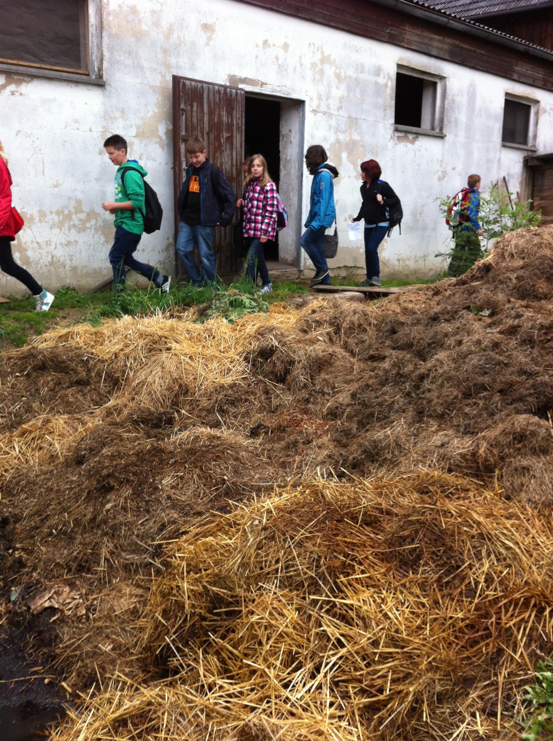 Unterrichtsfächer - Geographie Bauernhof Exkursion (hoch) Bild 2